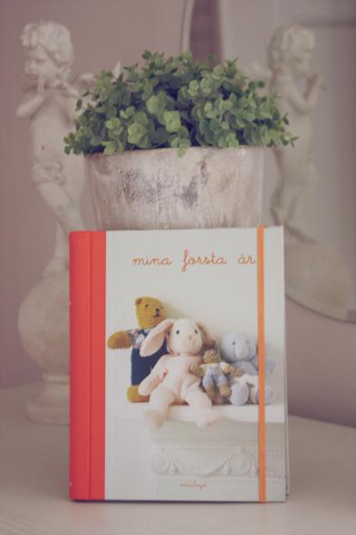 mina_första_år_bok